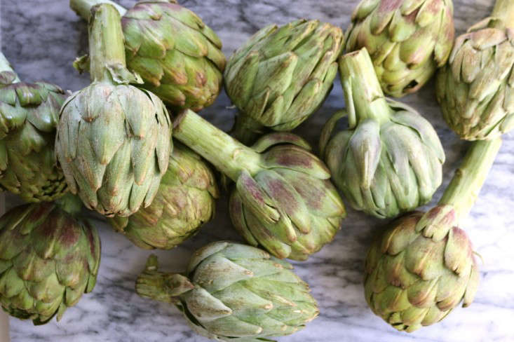 Artichokes ready for cooking, Gardenista