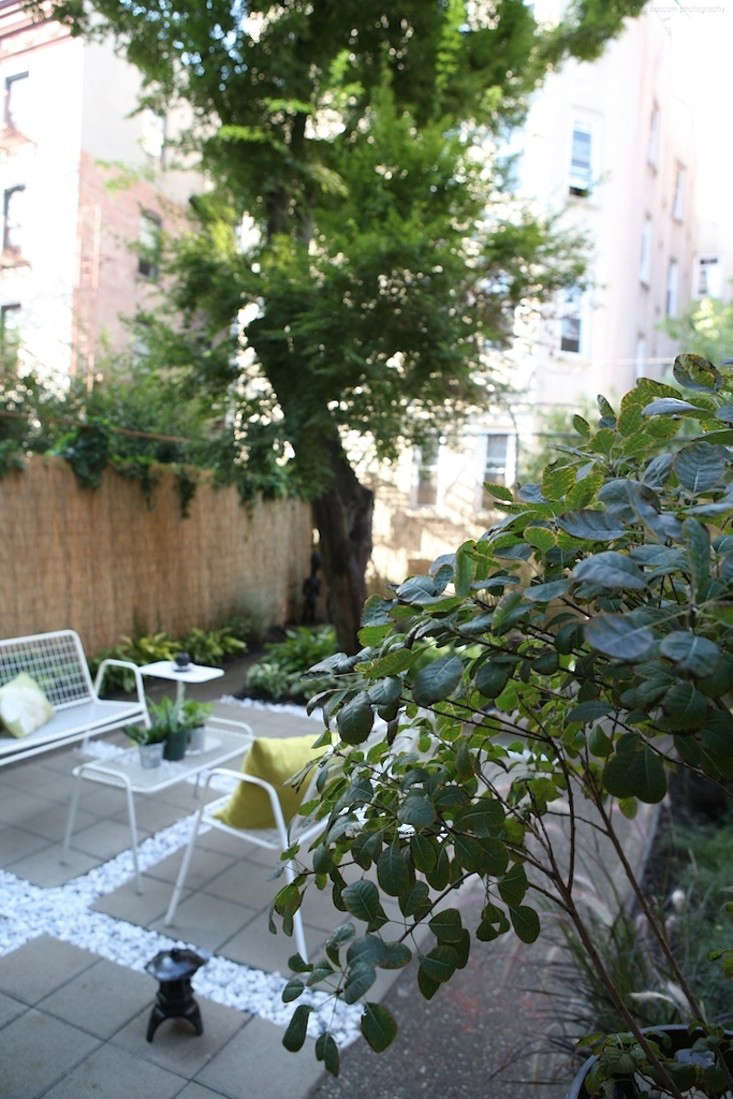 Before-and-After-Crown-Heights-Brooklyn-backyard-landscape-Ishk- Designs;-Gardenista 4