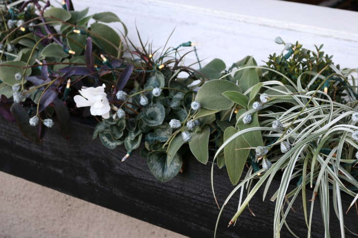 Black window boxes with eucalyptus pods and lights for holidays, Gardenista