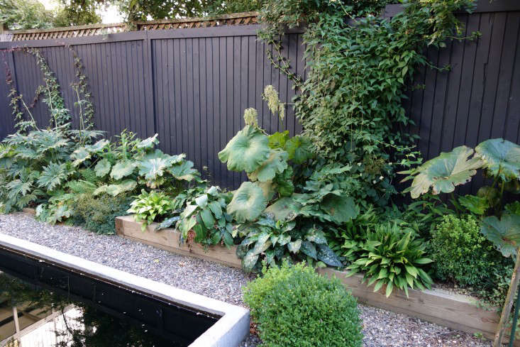 above brooklyn garden blogger james golden planted his backyard garden