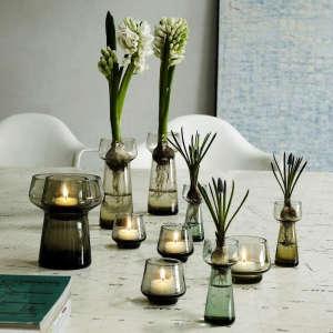 Homegaard Bulb Vases, Gardenista