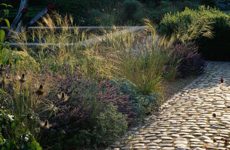 Bury-Court-paving-grasses