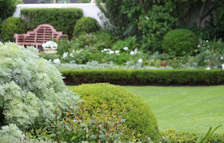 Cape-Town-Gardeni-green-lawn-Gardenista