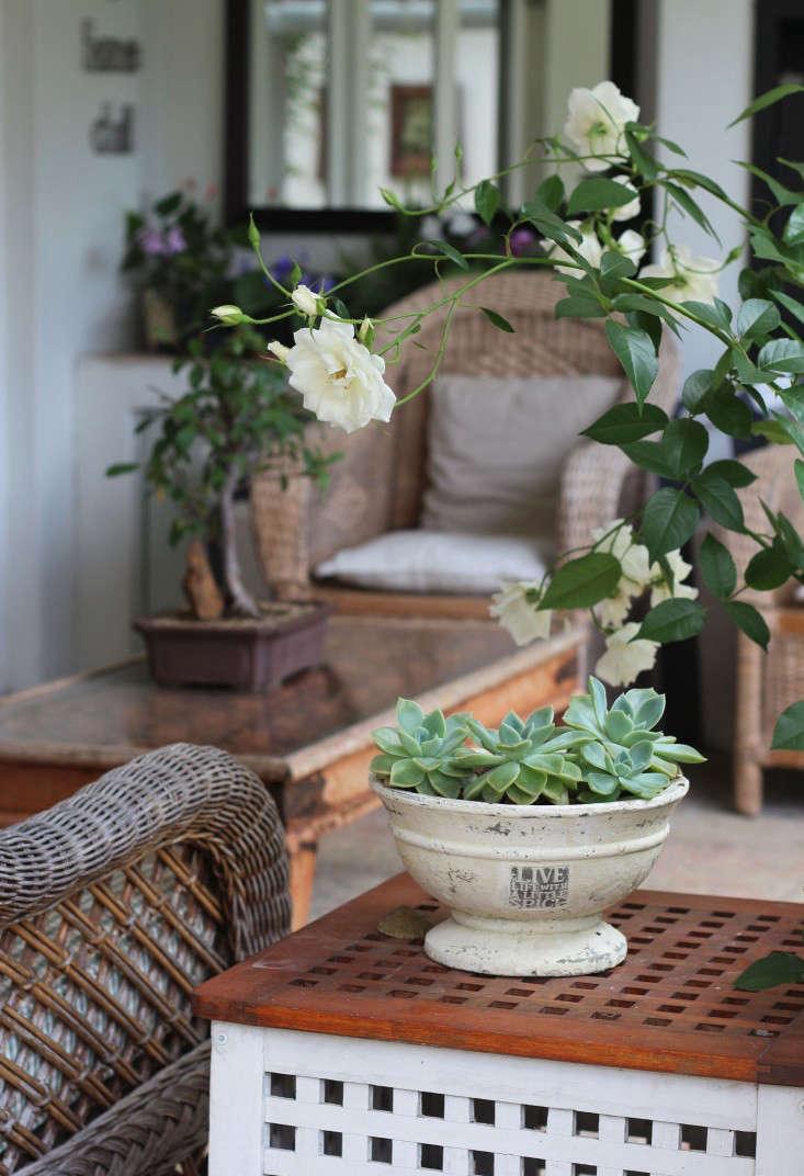 Cape-Town-garden--patio-Gardenista