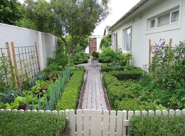 Cape-Town-vegetable-garden-trellises-Gardenista