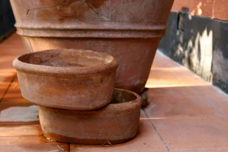 Caring-for-terra-cotta-planters-italy-meredith-swinehart