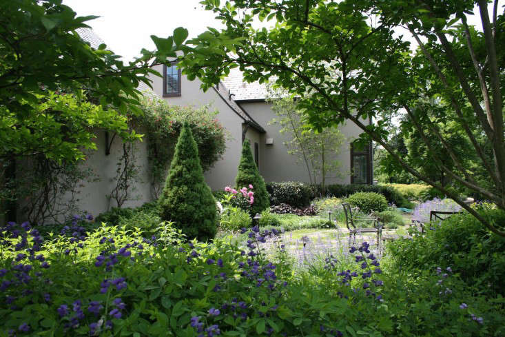 above a carex design project in potomac maryland is a perennial garden with cutting flowers that surrounds a breakfast patio the conical tree in the back