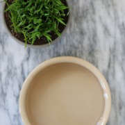 Cat Grass and Mason Cash Bowl on Marble, Gardenista