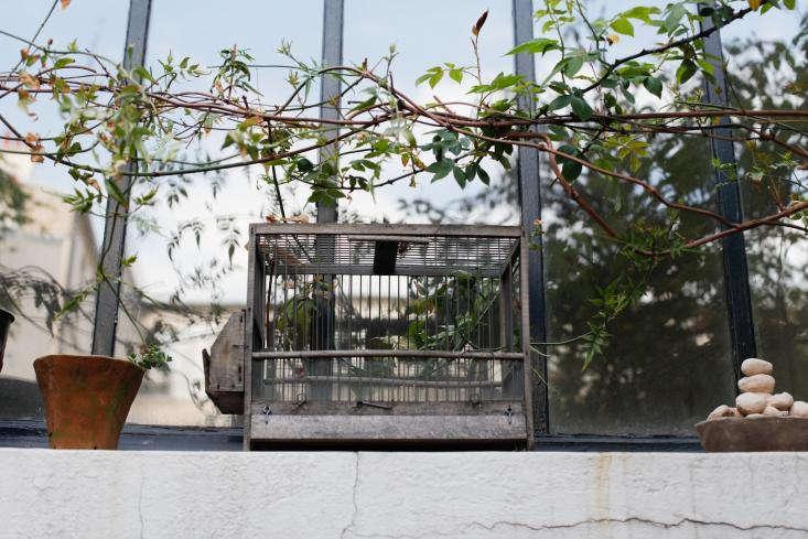Cecile-Daladier-Atelier-Garden-09