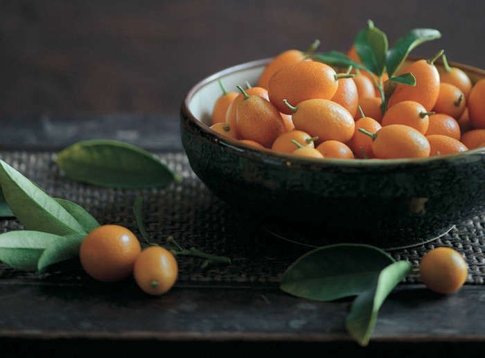 Citrus in Bountiful by Todd Porter and Diane Cu