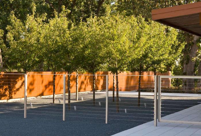 Coen-Partners-Uplighting-Seckman-Project-Gardenista