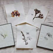 DIY seaweed prints finished 5