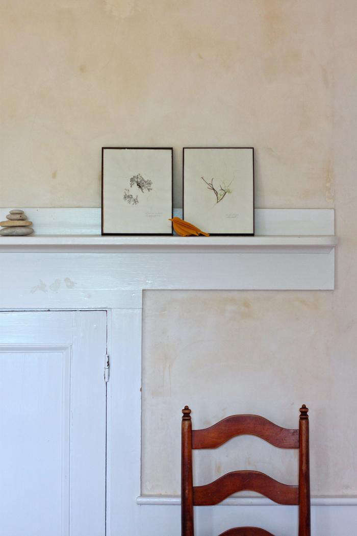 DIY seaweed prints on mantel 2- Gardenista