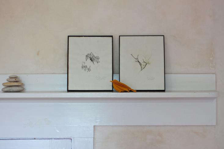 DIY seaweed prints on mantel- Gardenista