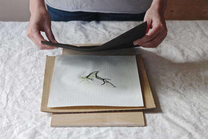 DIY seaweed prints, step 4
