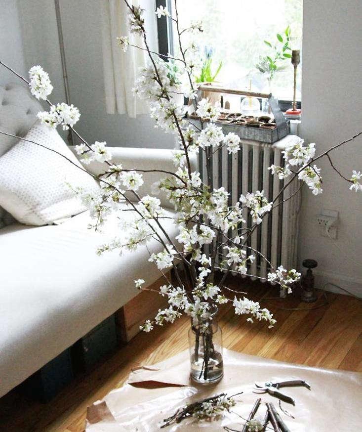 DIY_cherry-branches-floral-arrangement-bouquet-spring-gardenista