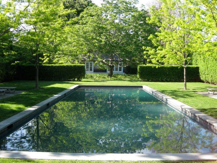 Deborah-Nevins-Laird-Grand-Garden-Gardenista