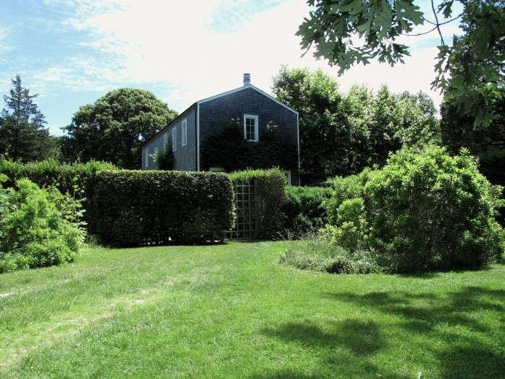 Deborah-Nevins-hedges-house-Gardenista