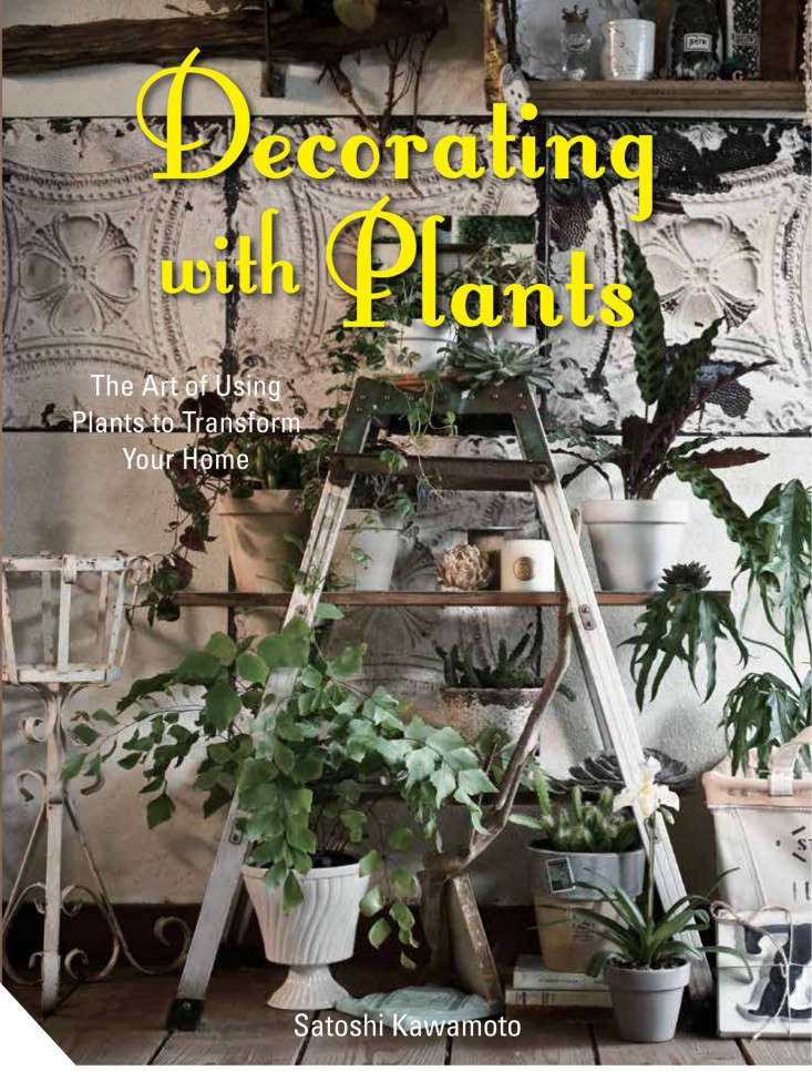 Decorating with Plants UK cover