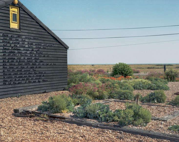 Derek-Jarman-garden-by-Howard-Sooley-8