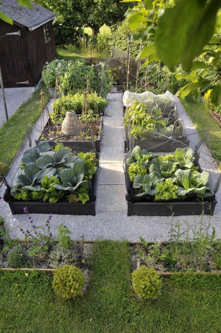 Design-Finalist-Judy-Brown-Gardenista-1