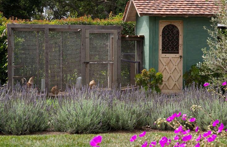Design-Finalist-Rob-Maday-Gardenista-3