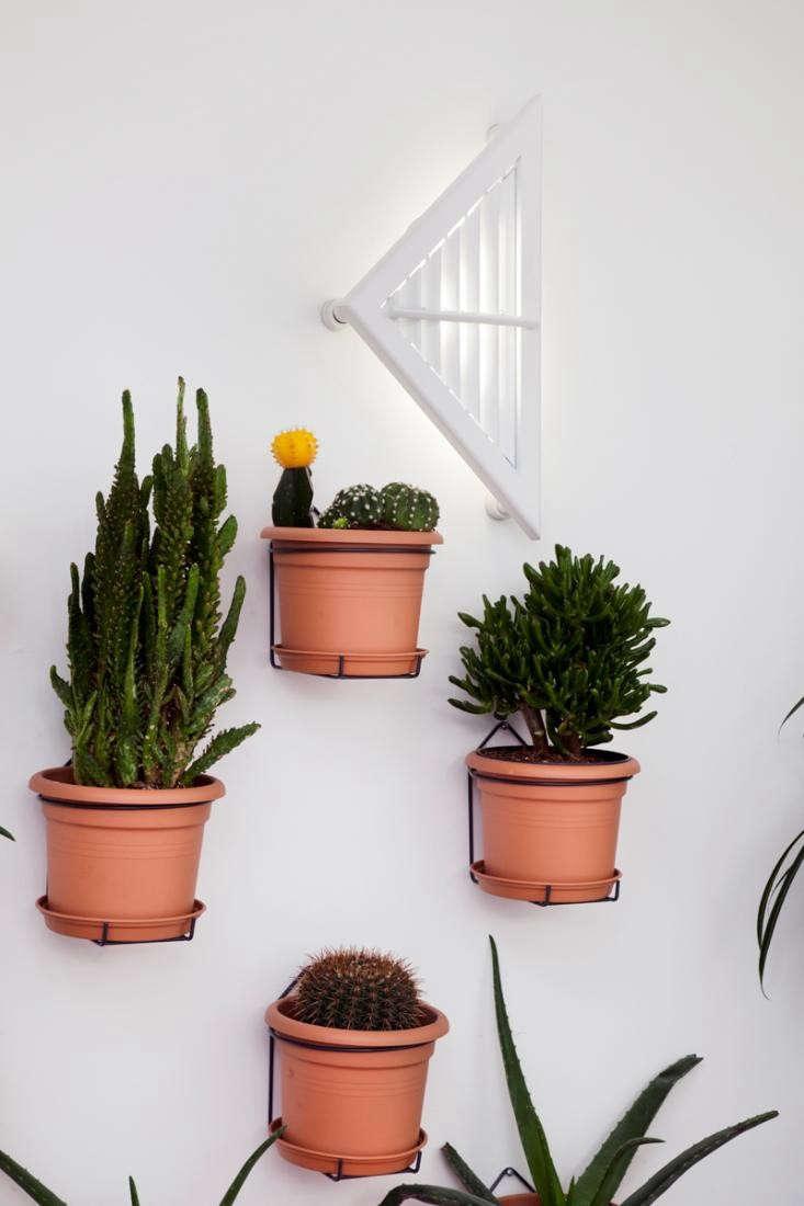 Design Sleuth Wire Pot Hangers Gardenista