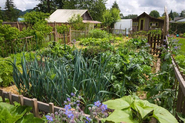 Edible-garden-britton-shepard-gardenista-considered-design-awards-3