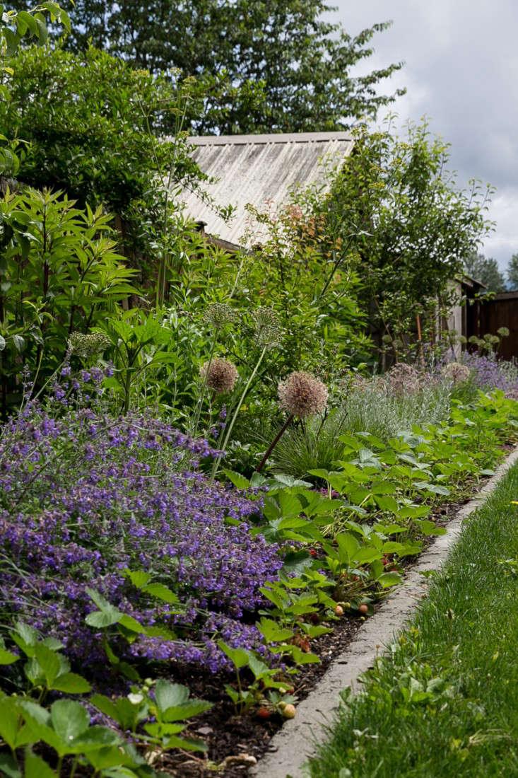 Edible-garden-britton-shepard-gardenista-considered-design-awards-5