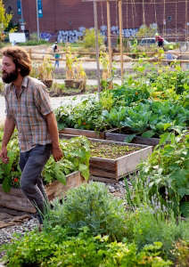 North Brooklyn Farm founder Henry Sweets at work by Rebecca Baust for gardenista