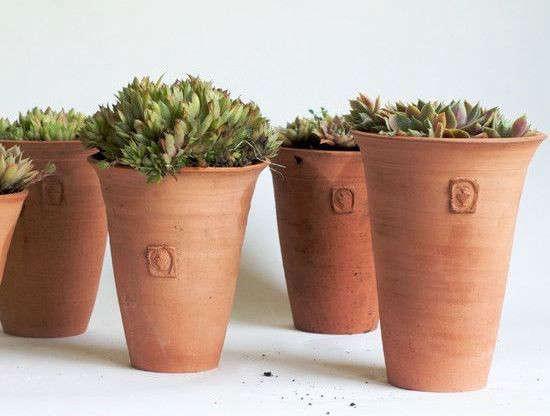Frances-Palmer-no-2-tom-pots-gardenista