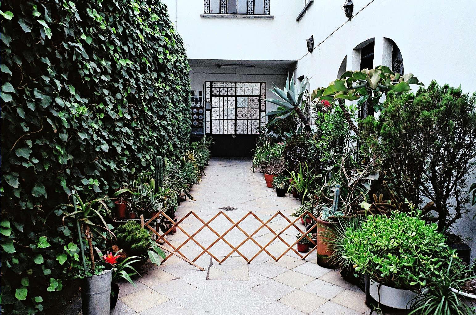 Freunde-von-Freunden-Alberto-Arango-Ramiro-Guerrero-064-gardenista