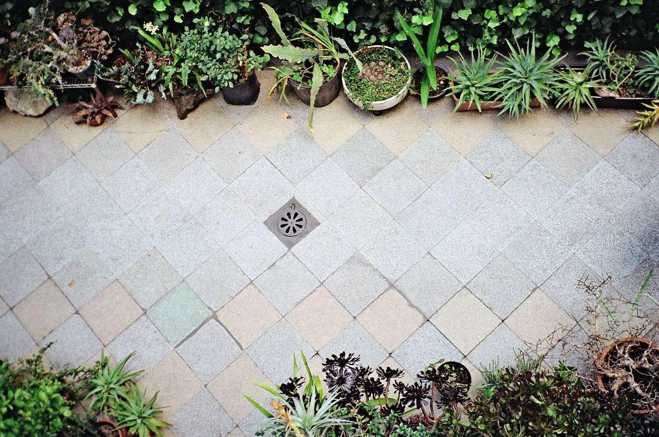 Freunde-von-Freunden-Alberto-Arango-Ramiro-Guerrero-077-gardenista