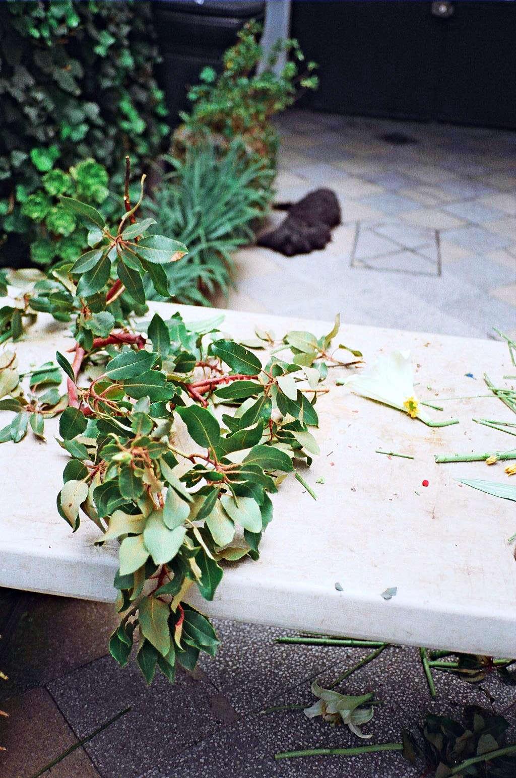 Freunde-von-Freunden-Alberto-Arango-Ramiro-Guerrero-084-gardenista