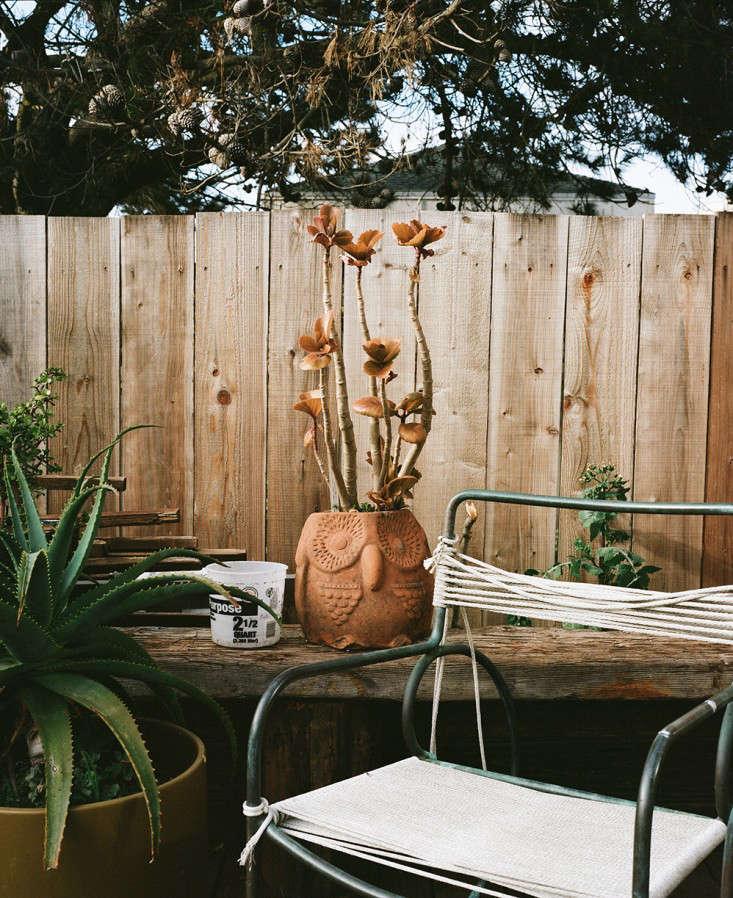 Freunde-von-Freunden-Jay-Nelson-surf-shack-backyard-Gardenista