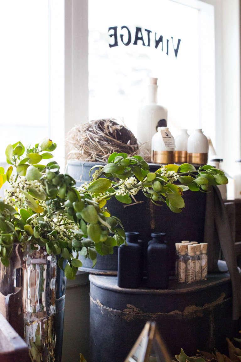 Garden-Apothecary-shop-half-moon-bay-gardenista-098