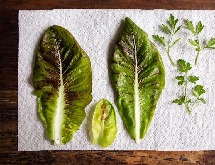 Garden-greens-on-paper-towel-2