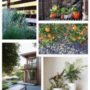 Gardenista-Collage-2