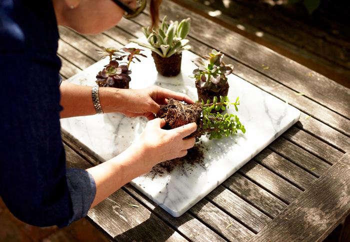 Gardenista.HowTo_.07
