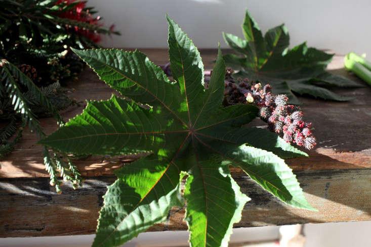 GardenistaHolidayArrangement_Castor-Sophia-Moreno-Bunge