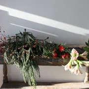GardenistaHolidayArrangement_Ingredients-Sophia-Moreno-Bunge