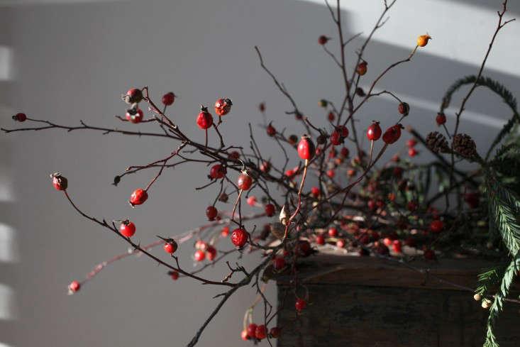 GardenistaHolidayArrangement_Rosehip-Sophia-Moreno-Bunge