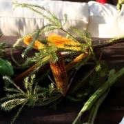 Gardenista_ArtichokeArrangement2
