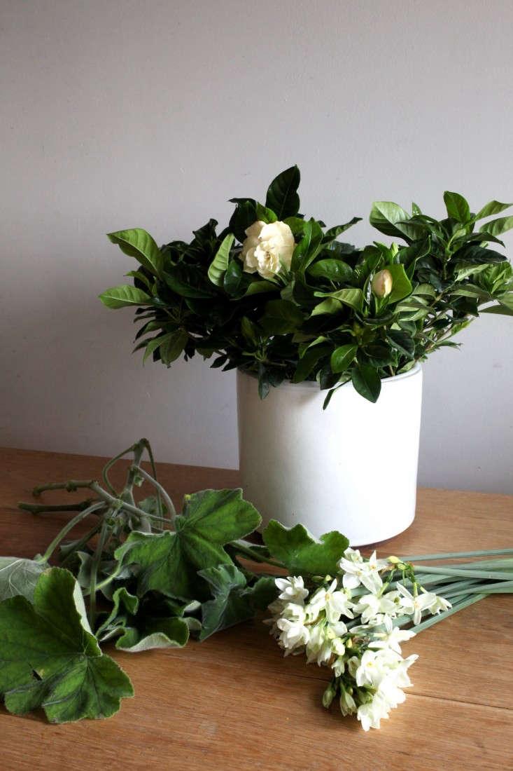 Gardenista_FragrantMaterials