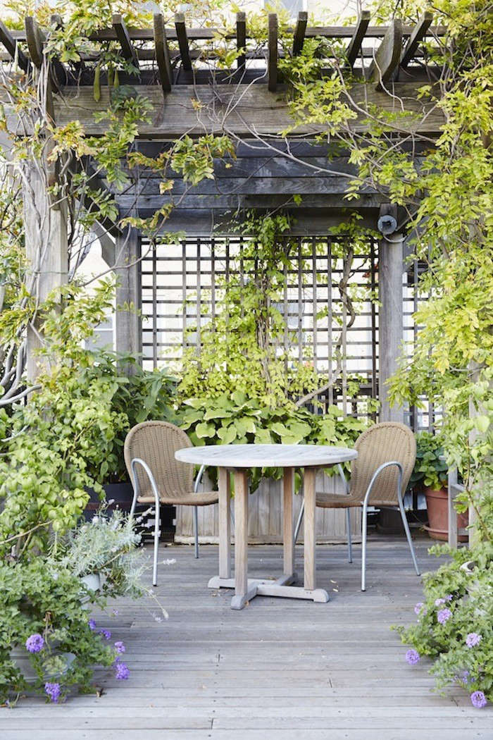 garden visit at home with designer julie weiss in manhattan gardenista. Black Bedroom Furniture Sets. Home Design Ideas