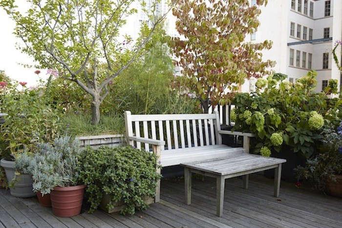 Gardenista_Weiss_Garden_137
