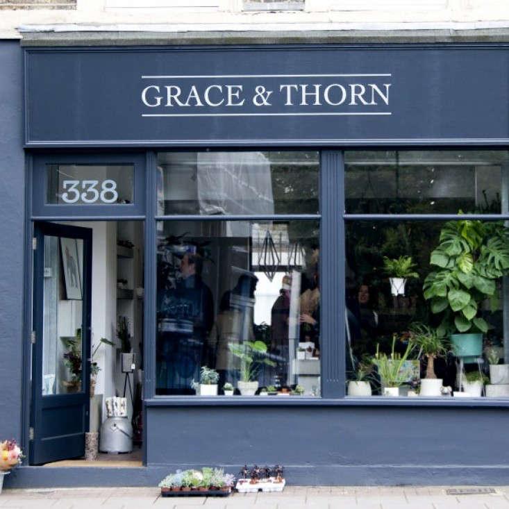 Grace-&-Thorn-Hackney-Road-Emli-Bendixen_gardenista-1