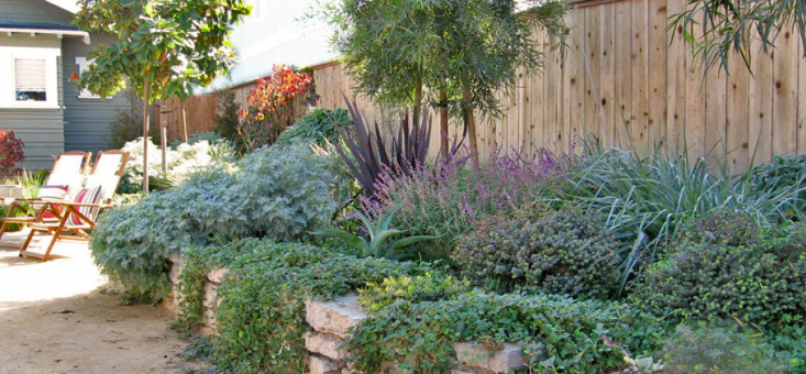 Grow Outdoor Design After Image with Succulents and Rock Wall Dry Garden, Gardenista
