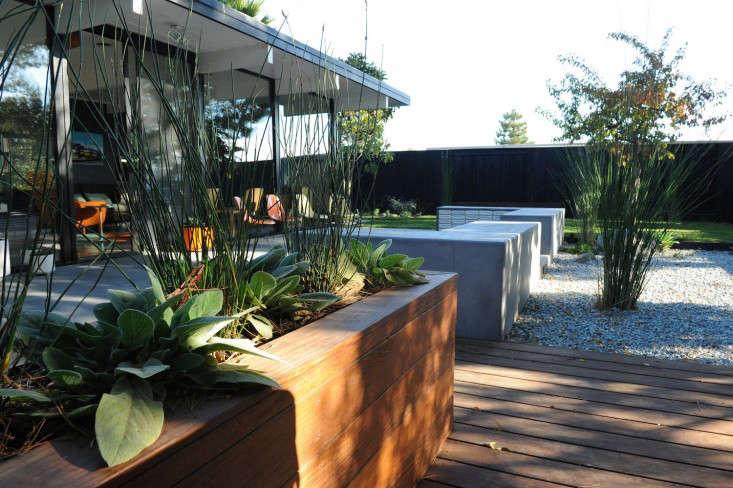 Growsgreen-Eichler-Landscape-Remodel-Gardenista-8