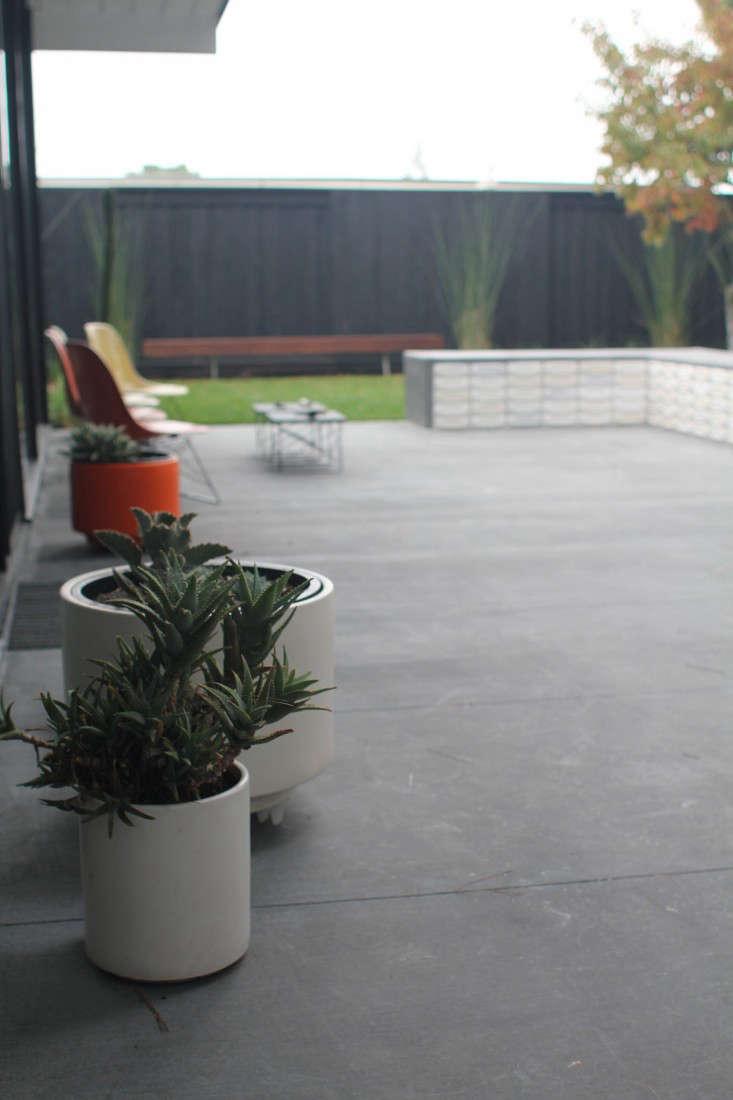 Growsgreen-Eichler-Landscape-Remodel-Gardenista-9